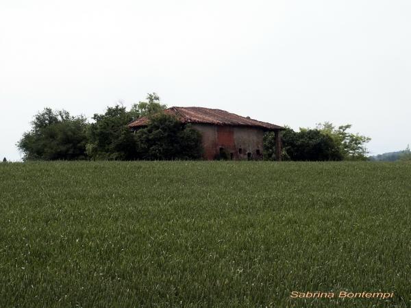 CASA-DI-CAMPAGNA.jpg